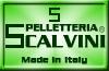 Pelletteriascalvini