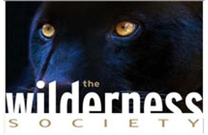 SUDAFRICA: LIONS & PENGUINS (da €2.190 per persona)