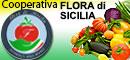 COOPERATIVA FLORA DI SICILIA