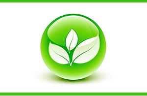 BIOSOLEX – GIOCATTOLI 100% NATURALI