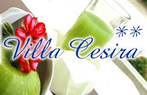 HOTEL VILLA CESIRA