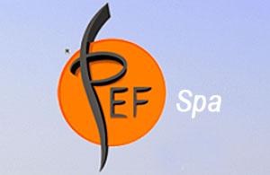 SMART LUCE & GAS - PEF ITALIA
