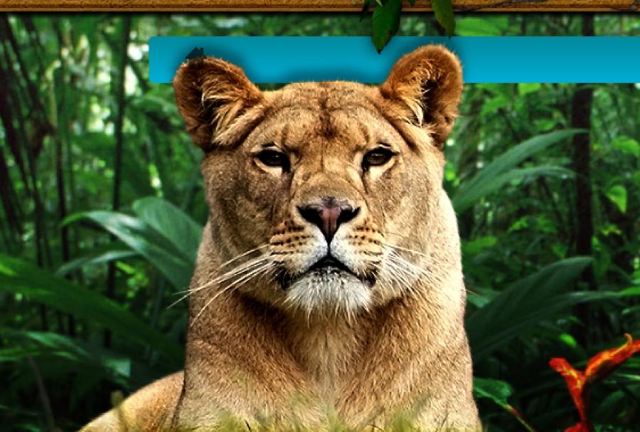 Safari Park d'Abruzzo