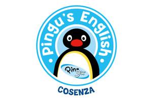 PINGU'S ENGLISH COSENZA DI VULCANO MARIA CHIARA