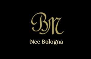 NOLEGGIO CON CONDUCENTE BIGONI MATTEO